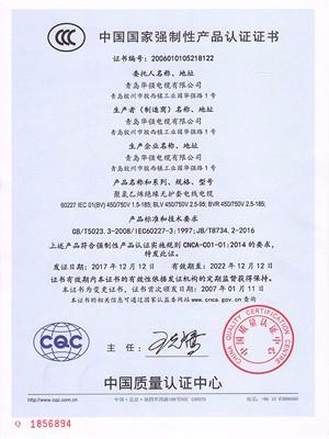 中国质量认证证书1